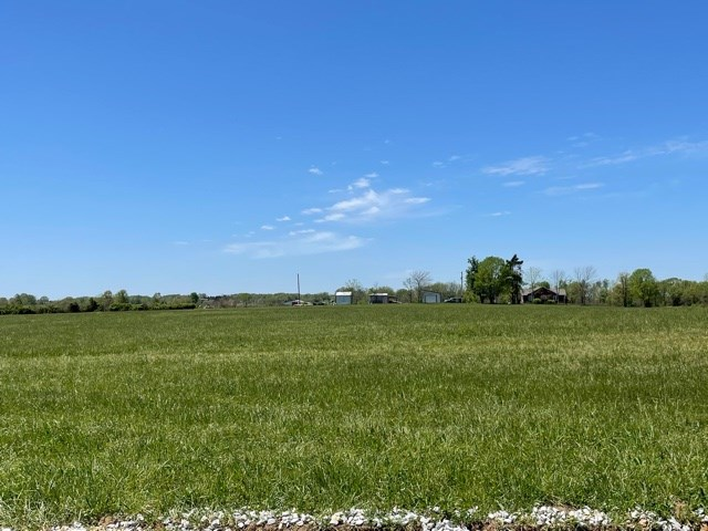 Mountain Grove Lot for Sale