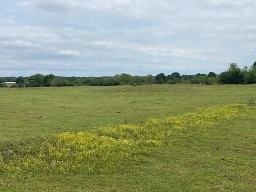 Land for Sale Southeast Oklahoma- Haskell County- Oklahoma