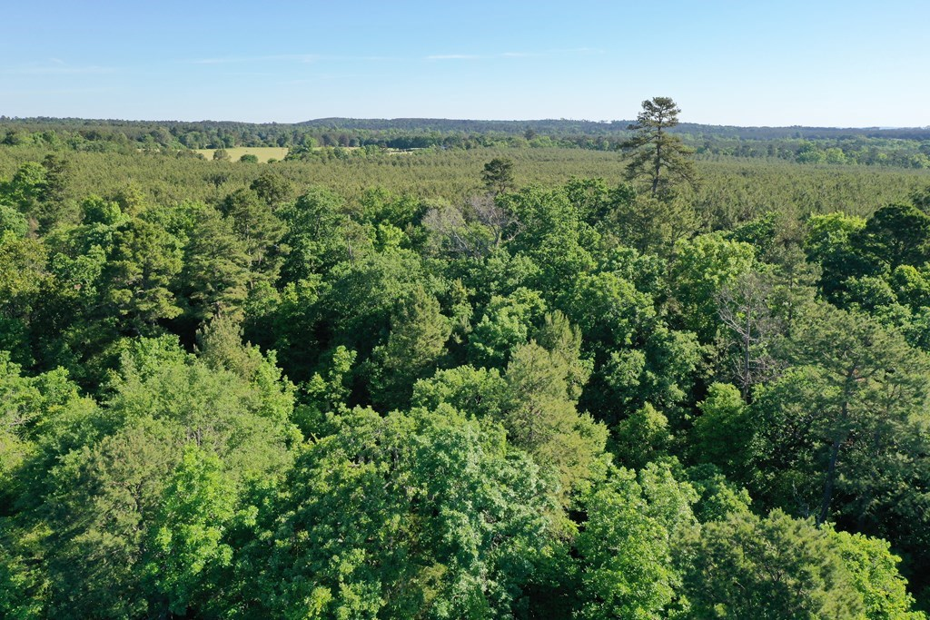 4 ACRE TRACT IN ELKHART TEXAS