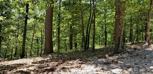 Wooded land tract near Beaver Lake & Eureka Springs for sale