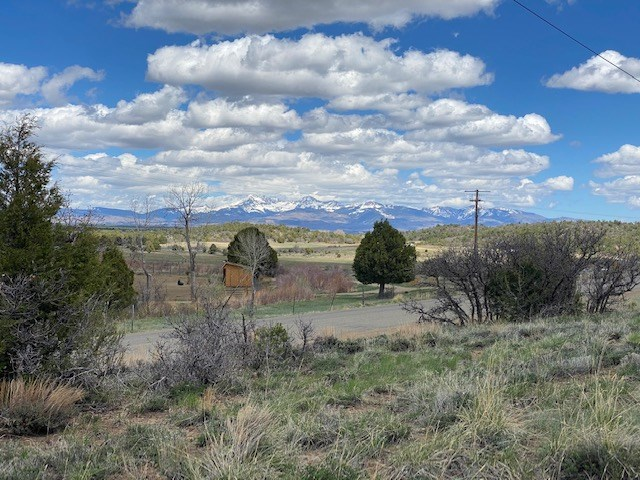 Mobile Home in the Country, Dolores, CO
