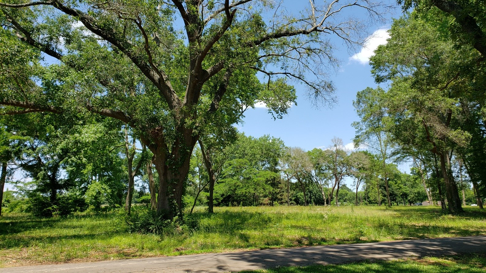 WATERVIEW LOT FOR SALE IN RESTRICTED NEIGHBORHOOD