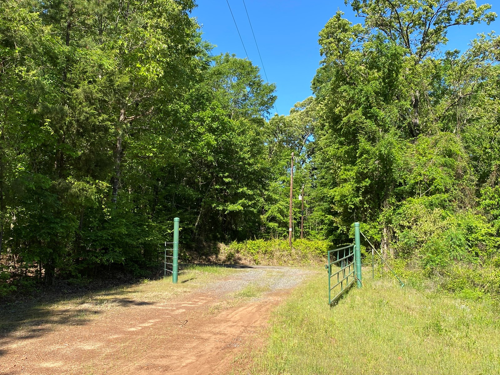 Timber Land For Sale, Upshur County, Ore City, Texas