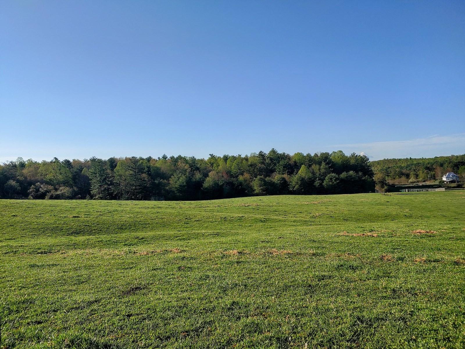 Farm Land for Sale in Check VA!
