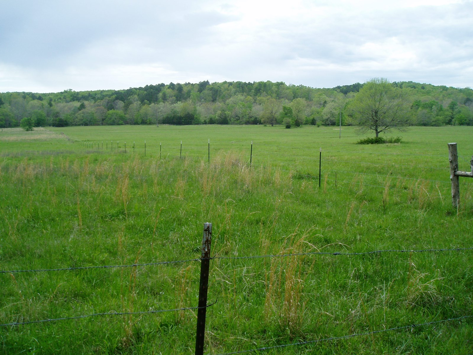If you are looking for a place to build a house with acreage