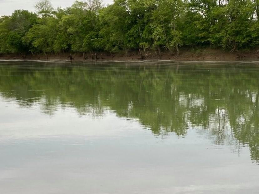 Pending Riverfront Land for Sale, Burkesville Kentucky