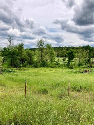 LAND, HOMESITE, NEAR NATIONAL FOREST