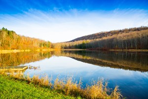 MOUNTAIN TOP HUNTING PROPERTY WITH SEMI-PRIVATE LAKE.