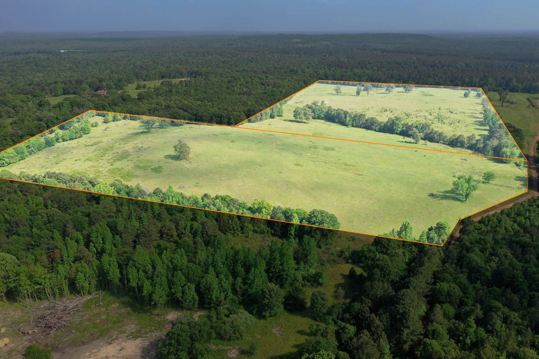 Country Land For Sale, Upshur County, Ore City, Texas