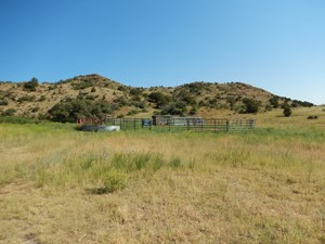 COLORADO MOUNTAIN RANCH WITH WELL & SPRINGS IN TELLER COUNTY