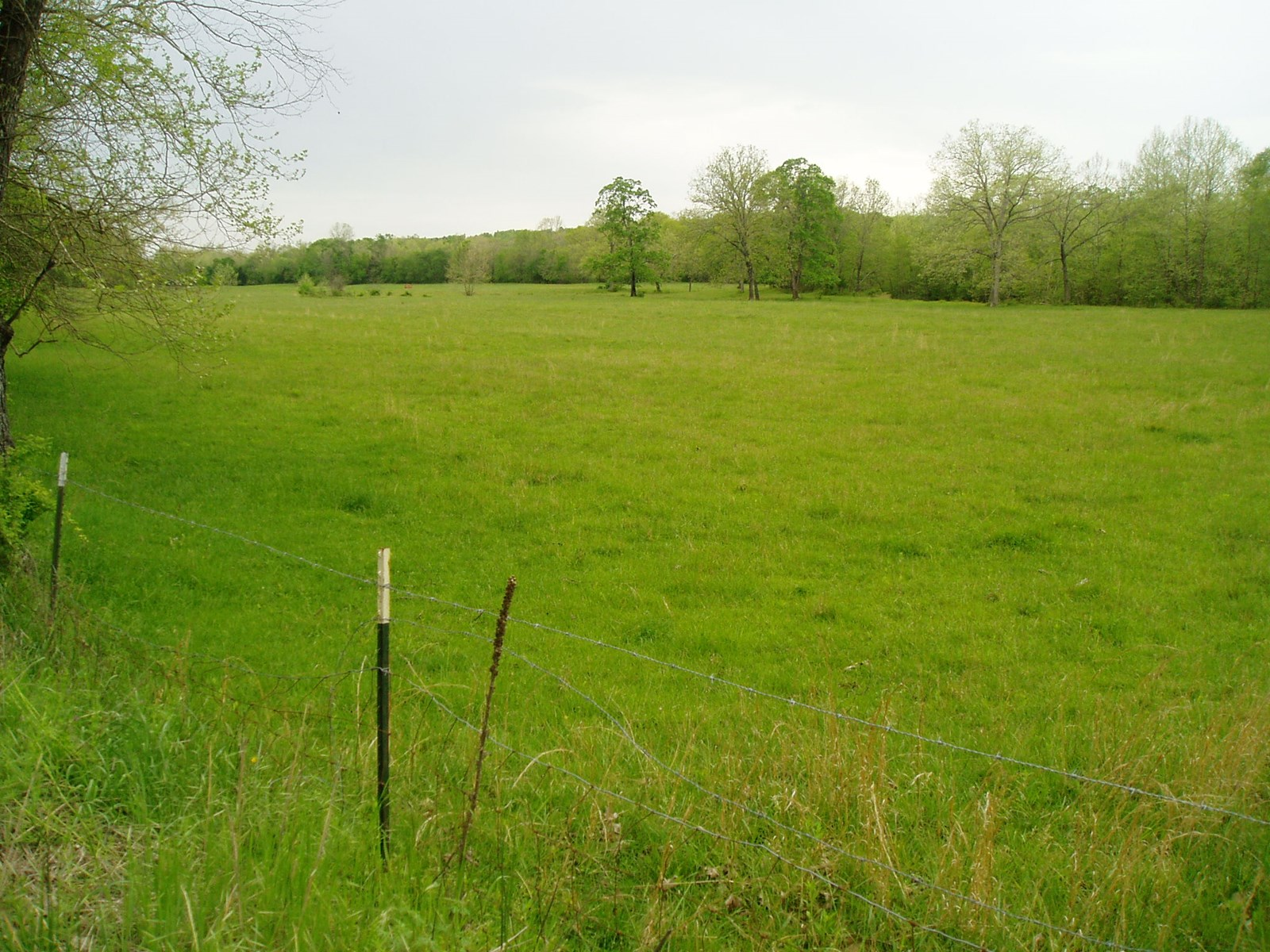 460 acres M/L of pasture and woodland with a artesian well