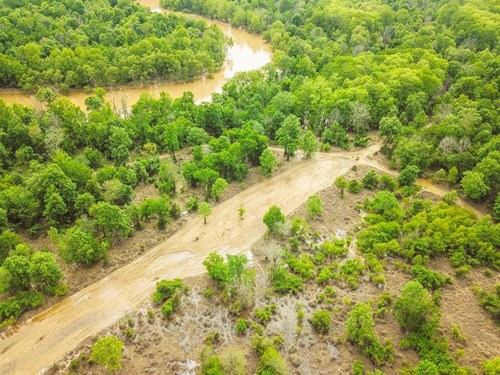 1260 Acres Riverfront Hunting Land for Sale, Port Gibson, MS
