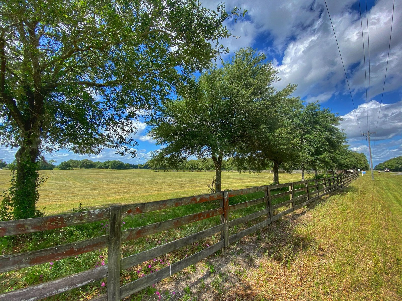 BEAUTIFUL COUNTRY LIVING IN BELL FLORIDA!