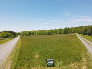 LEVEL TRACT IN MEADOWS OF DAN, VA. OPEN PASTURE AND TIMBER