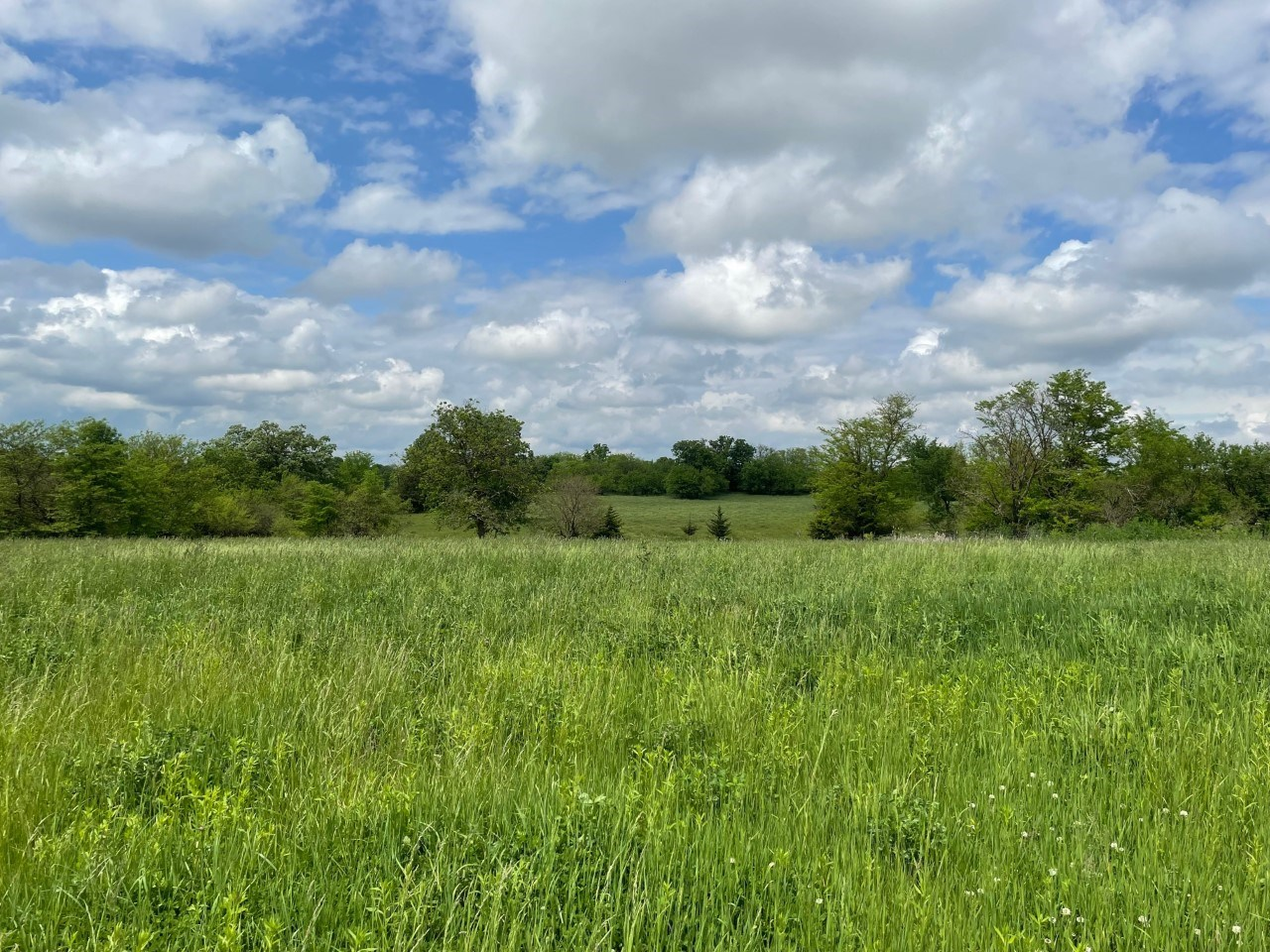 15 M/L Acres For Sale Livingston County