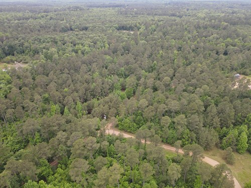 Timberland for sale in Columbia County Arkansas