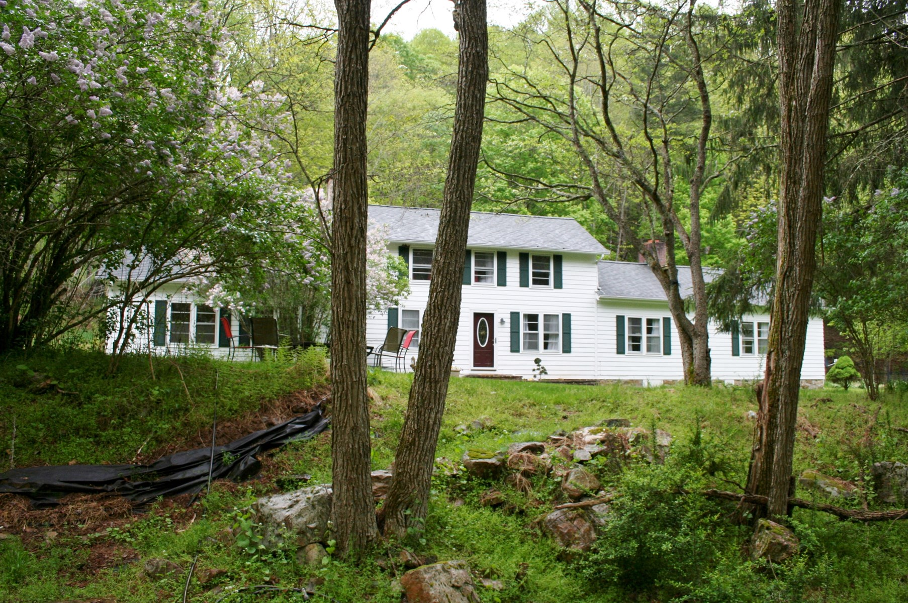 15 acres along the native trout stream Crab Run, Highland Co