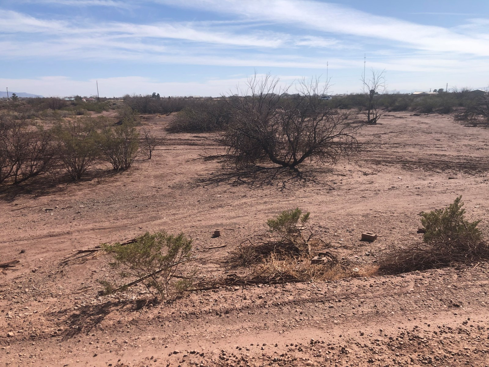 Commerical lot in Southern New Mexico