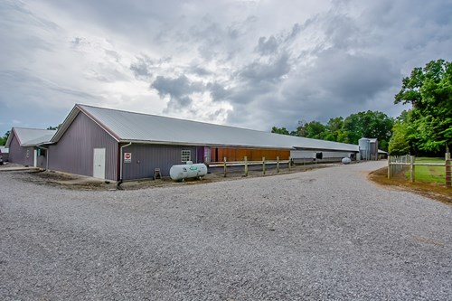 Breeder Poultry Farm For Sale in McCreary County, Kentucky