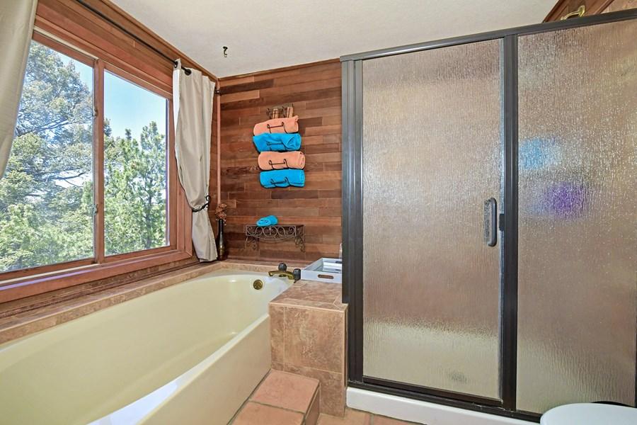 Master Bath - Tub & Shower