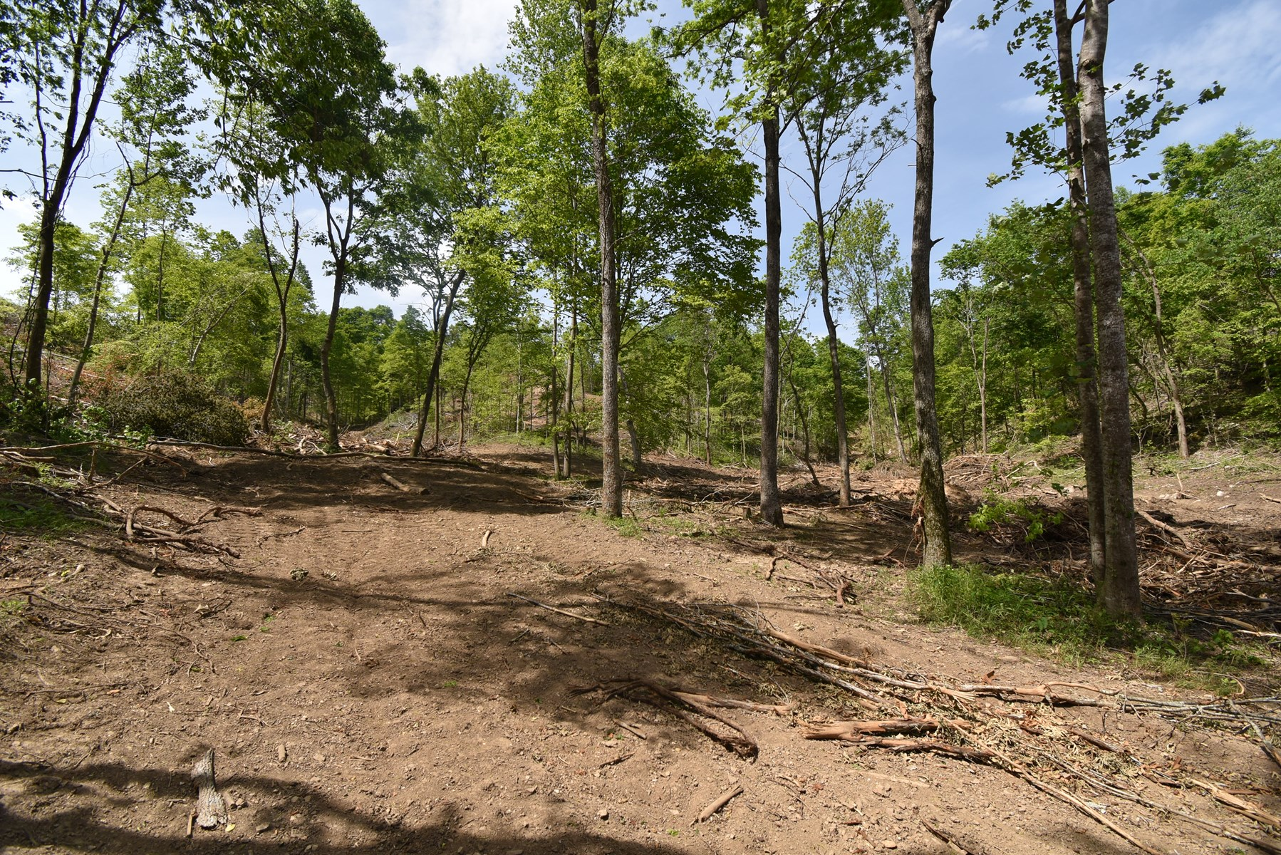 Vacant Land For Sale in Tennessee near Tn River and Park!