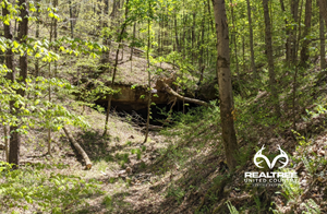 OHIO HUNTING PROPERTY FOR SALE