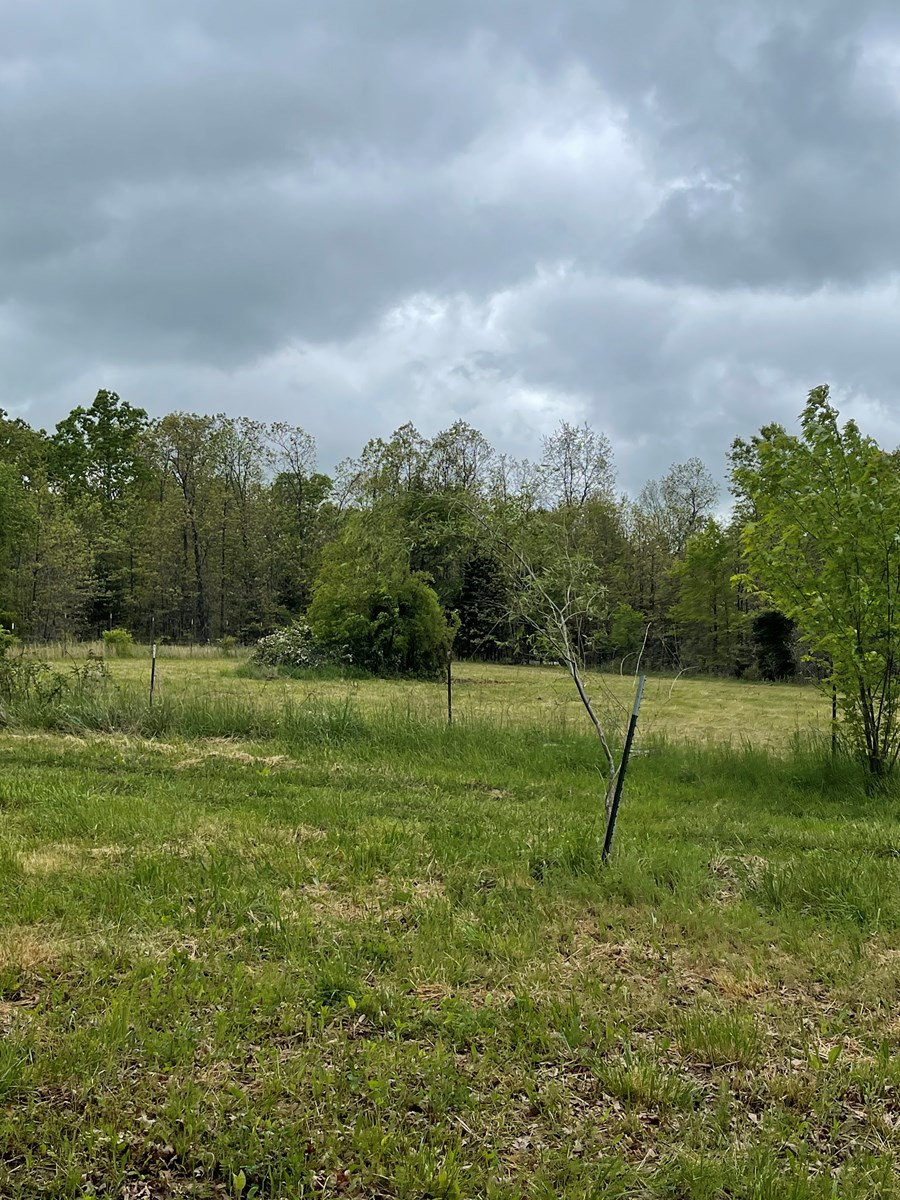 Texas County Missouri Recreational Property for Sale