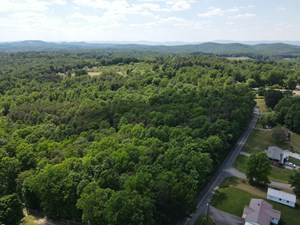 33.785 ACRES OF LAND FOR SALE IN HENRY COUNTY, VA