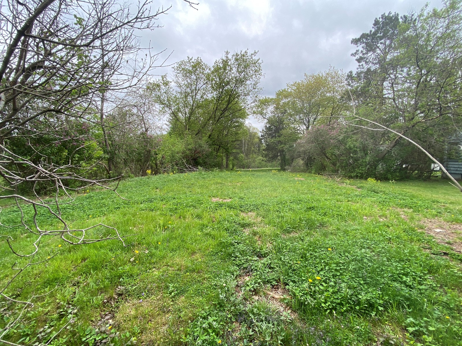 Vacant Lot Ready To Build For Sale In Sandstone MN