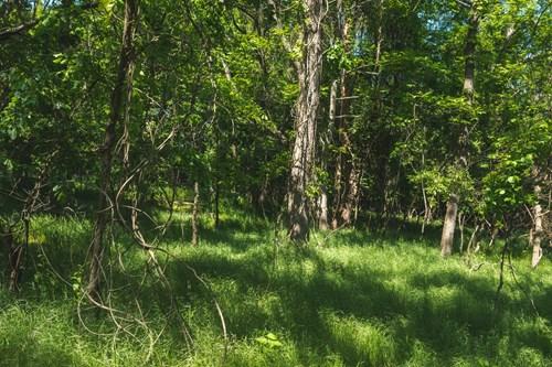 Land For Sale in Blacksburg VA
