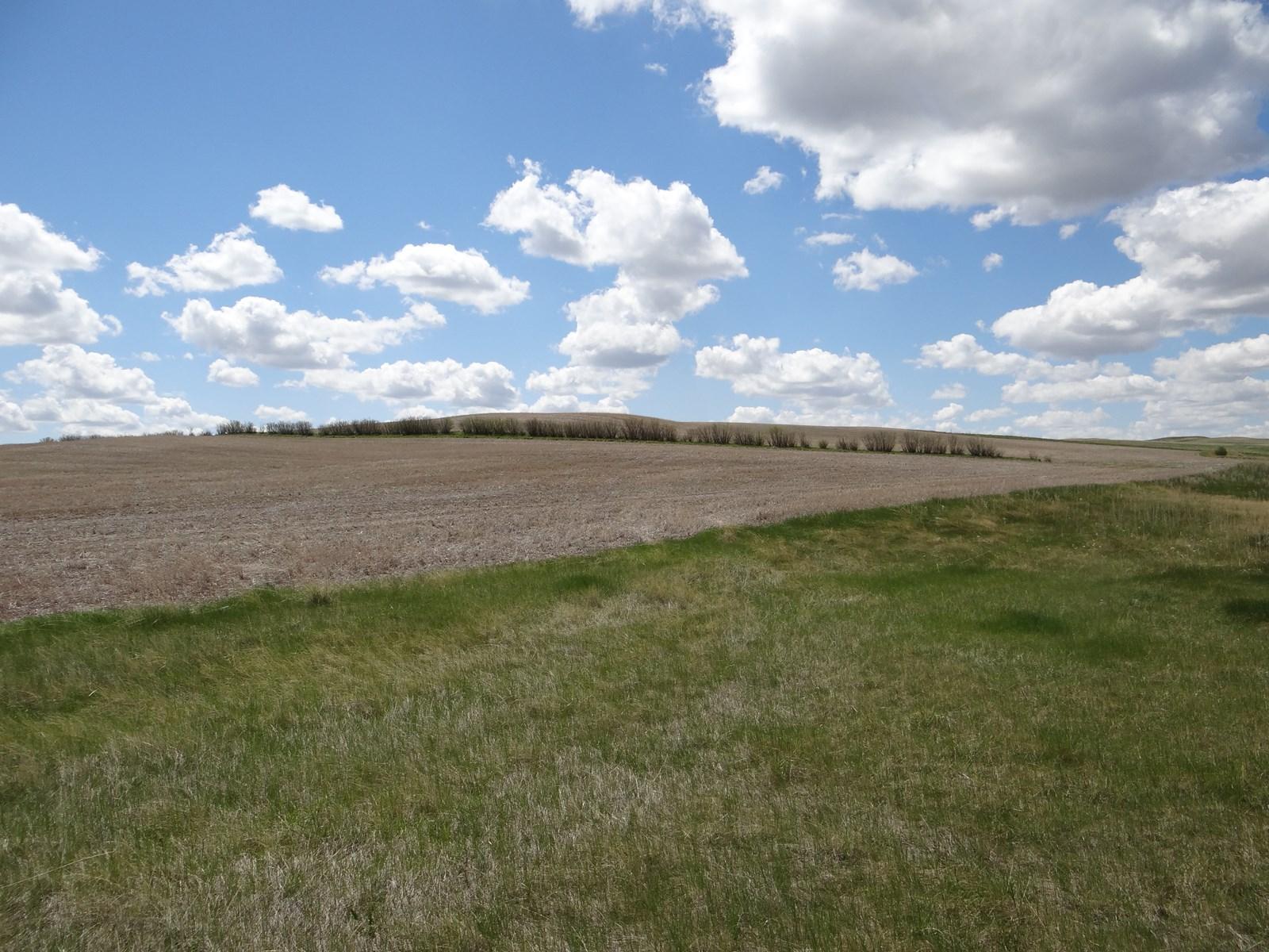 Central Montana Farm Land For Sale
