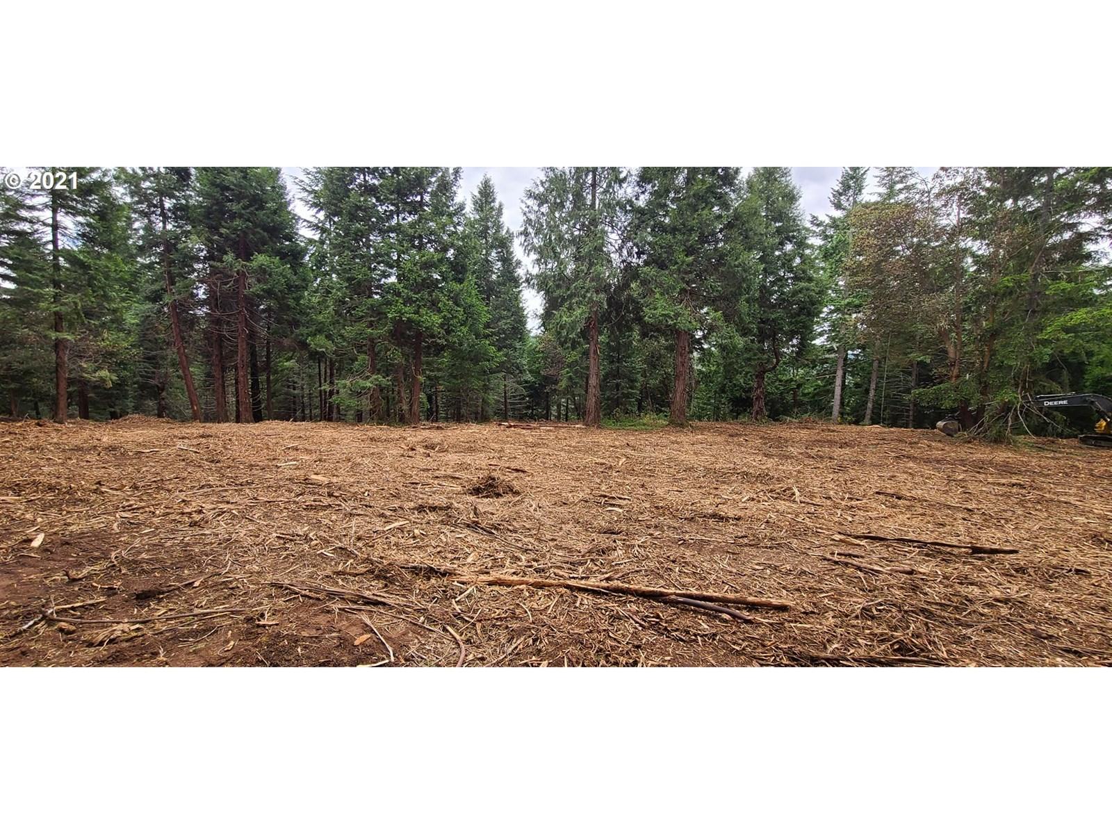 13.38 Private Acres For Sale in Drain, Oregon