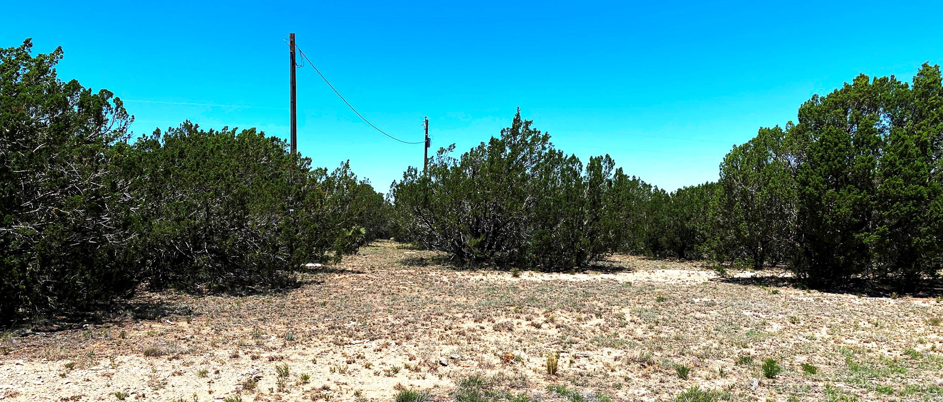 Mountain Property for Sale In Queen, NM