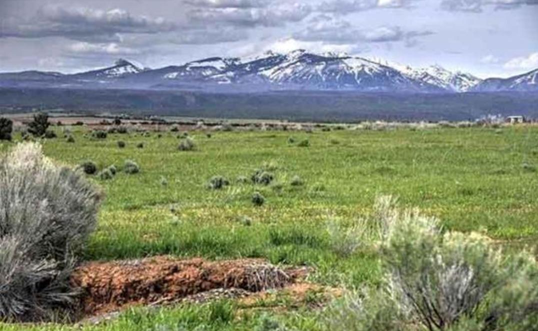 35 acres with expansive La Plata views