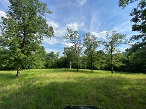 LAND FOR SALE YEAR ROUND SPRING, POND NEAR BULL SHOALS LAKE