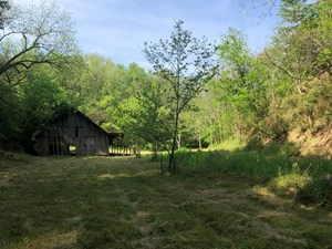 42 ACRES UNRESTRICTED LAND FOR SALE IN EAST TN
