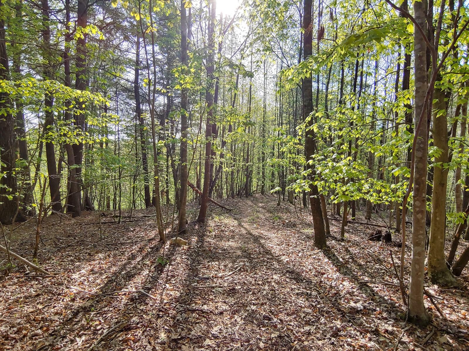 Land for Sale in Ferrum VA