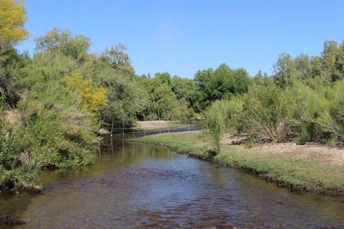 200-300 Head Bridle Bit Ranch, Marana, AZ - $3.5M