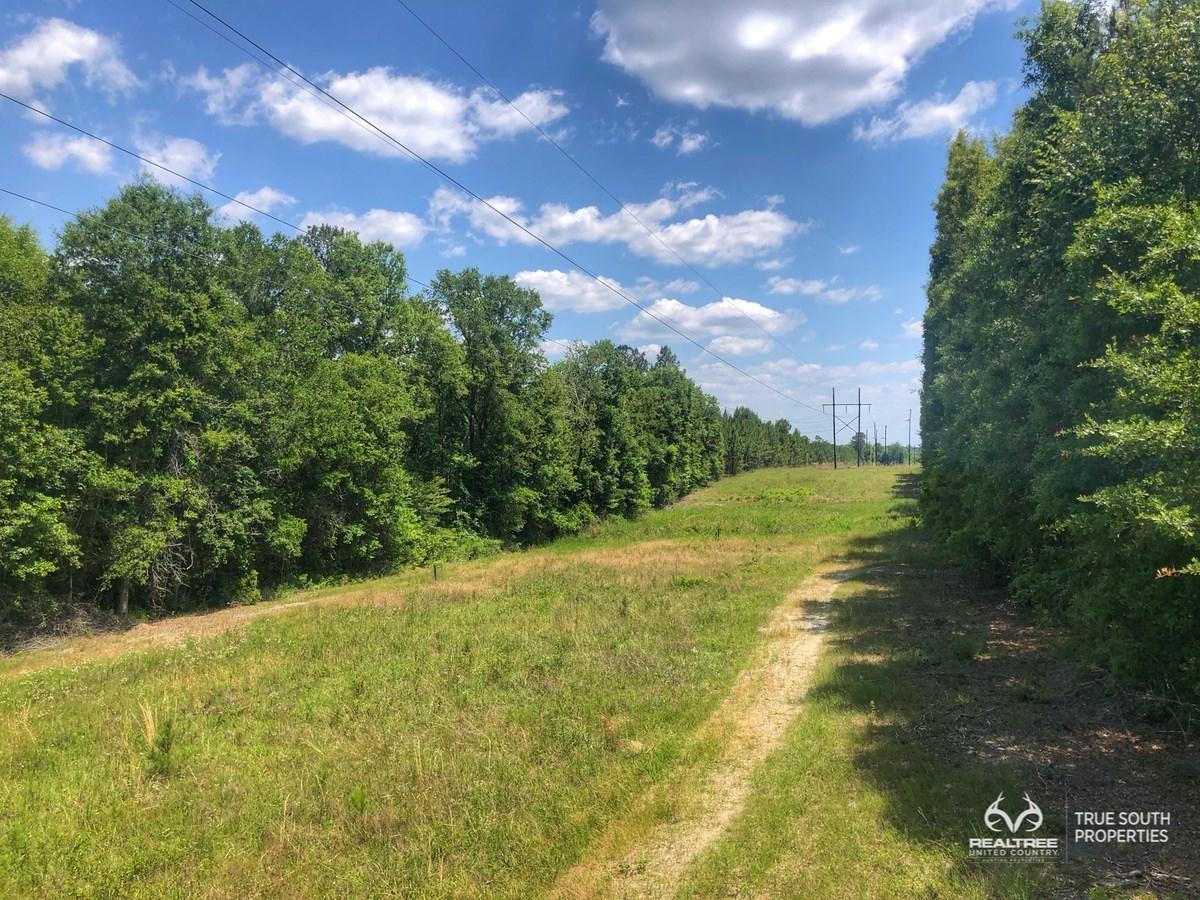 Multiple Use Undeveloped Land Near Downtown Sylvania