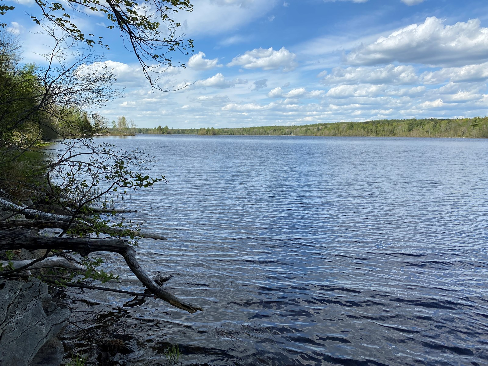 Maine Wilderness Lakefront Land & Cabin for Sale