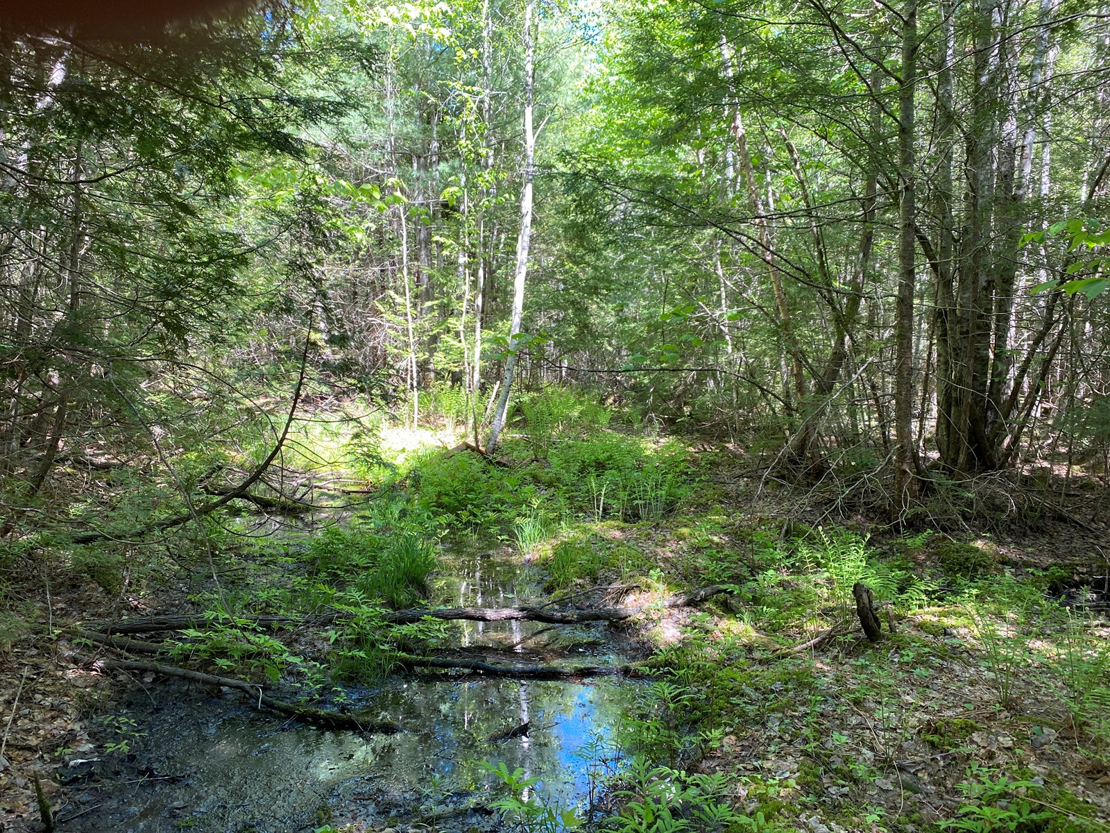 Maine Lake Access Land for Sale