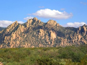 DRAGOON MOUNTAIN RANCH SUBDIVISION IS IN ST DAVID AZ.