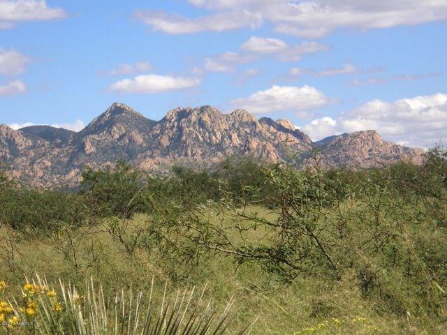 Acreage in Dragoon Mountain Ranch St David AZ