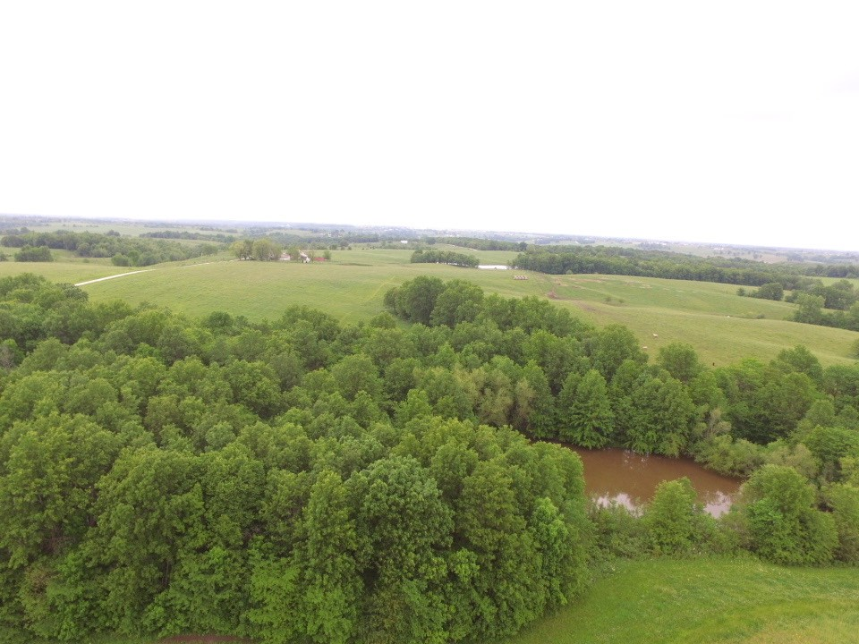 30 acres highly productive pasture and timber ground