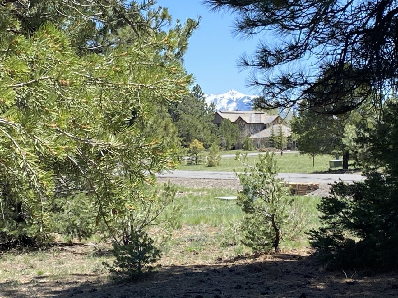 Golf Course Lot For Sale, Log Hill, Ridgway, Colorado