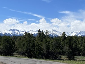 PRIVATE MOUNTAIN LOT FOR SALE, LOG HILL, RIDGWAY, COLORADO