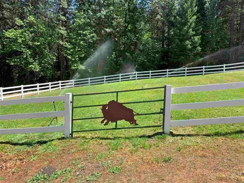 Timbered 156 Acres with irrigated horse pastures in Etna, Ca