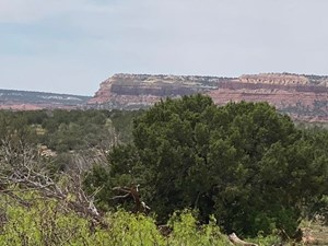 140 ACRES IN GUADALUPE COUNTY NEW MEXICO'S BULL CANYON RANCH