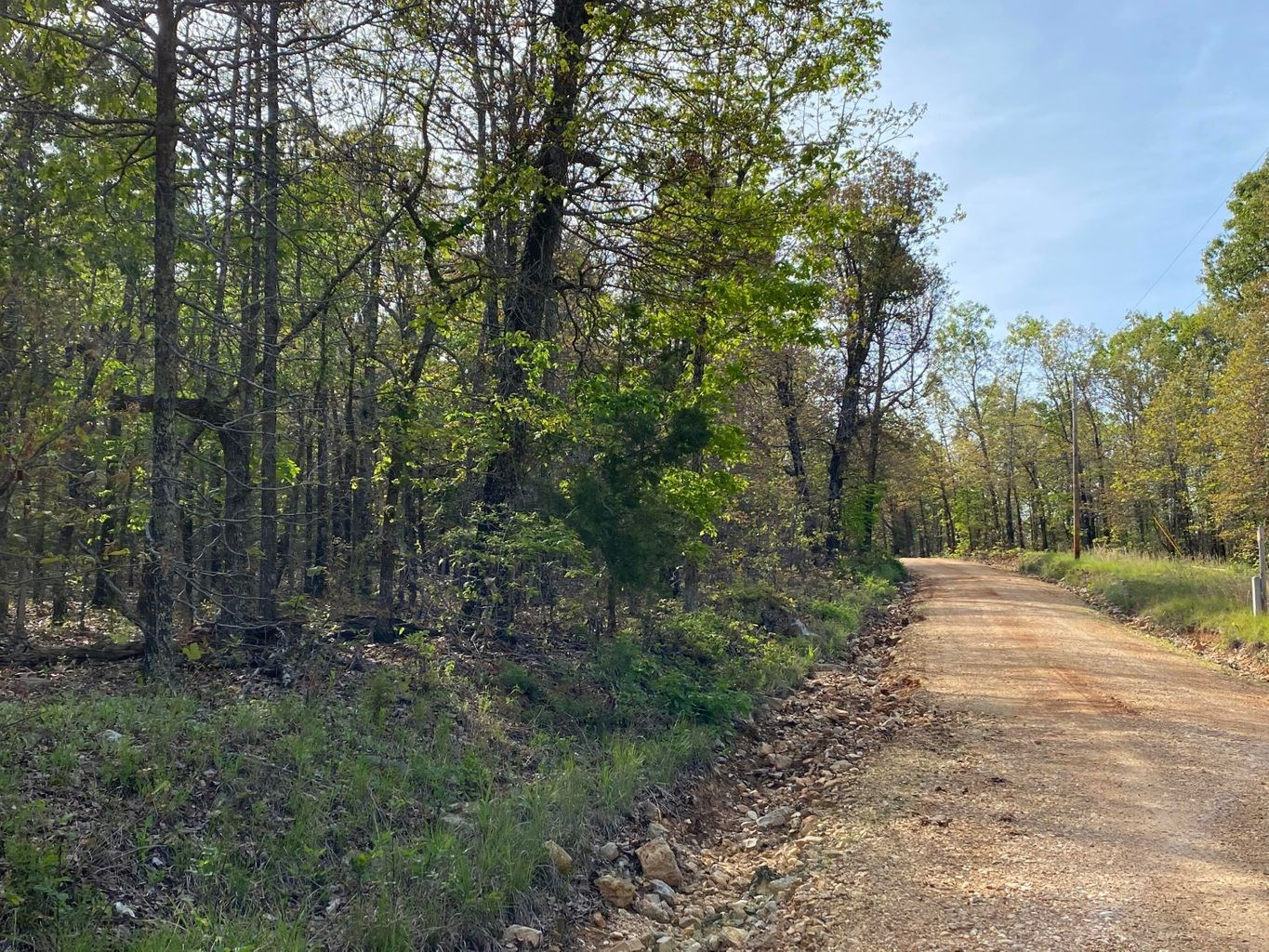 Vacant Land for Farming with Lots of Timber