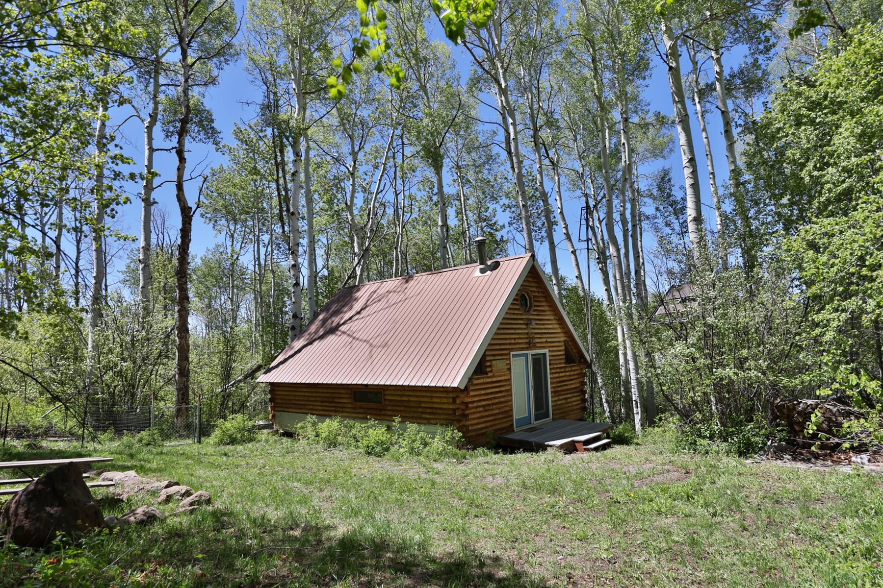 Cabin Near Vega Reservoir for Sale in Colorado